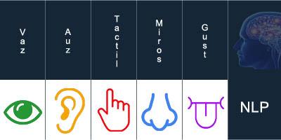 Cele 5 simturi