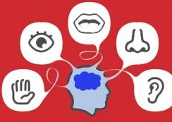 Exercitii pentru cresterea acuiutatii vizuale, kinestezice si auditive
